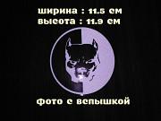 Наклейка на авто или мото Питбуль Белая светоотражающая Київ