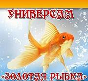 Приглашаем продавца-кассира в продовольственный магазин Одеса
