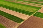 Продаж землі 6га сільськогосподарського призначення в Славутському р-і, Хмельницькій області Славута