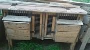 Клітки для кролів Тернопіль