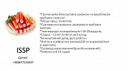 Виробництво крабових паличок Бердянськ