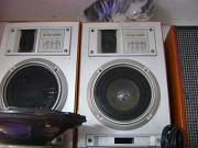 Колонки, акустичні системи 10Ас225 Бершадь