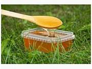 Мед бджолиний соняшниковий Днепр