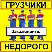 Услуги грузчиков недорого. Одесса