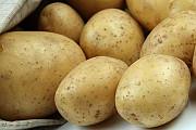 Продам картоплю Любомль