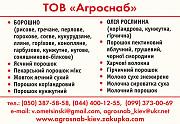 соєве борошно для ковбасних виробів, консерв і напівфабрикатів Київ