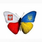 Трудоустройство в Польше. Достойная оплата Кропивницький