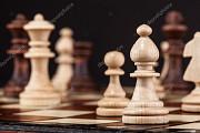 Шахматные занятия онлайн Хмельницький
