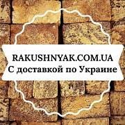 Прямые поставки камня ракушняка Харків