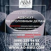 Уголовный адвокат, защита в суде, при допросе и обыске Харків