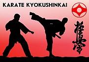 Запрошуємо в секцію кіокушинкай карате. Вінниця