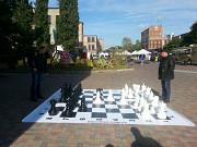 Садовые парковые уличные Большие шахматы Черкаси