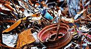 Металолом,металобрухт Луцьк