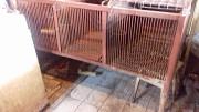 продам 2 клетки металлические для кроликов или нутрий Киев