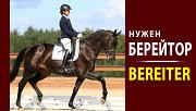 Берейтор, Bereiter, Обучение лошадей, Работа в Германии, Всадник, Коновод, Верховая езда, Выездка Київ