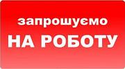 Торговый представитель с авто (без авто) ежедневная оплата 15 000 грн. Житомир