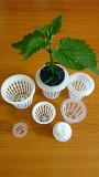 Корзинка для выращивания в гидропонике.Чаша для растений. Київ