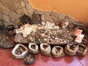 Продам монеты СССР Крижопіль