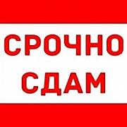 Срочно сдается 1кв 3500 Вінниця