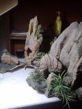 Скалы для аквариума Миколаїв