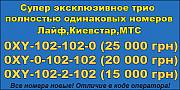 Трио полностью одинаковых номеров МТС,КС и Лайф с цифрами 102.Новые. Кременчук